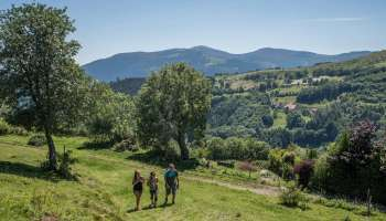 Hiking route 2 days: Tour of Grand Ballon and Petit Ballon