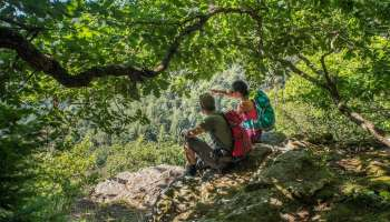 2-day hiking circuit: Osenbach - Petit Ballon tour